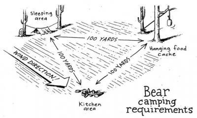 Backcountry bear safety