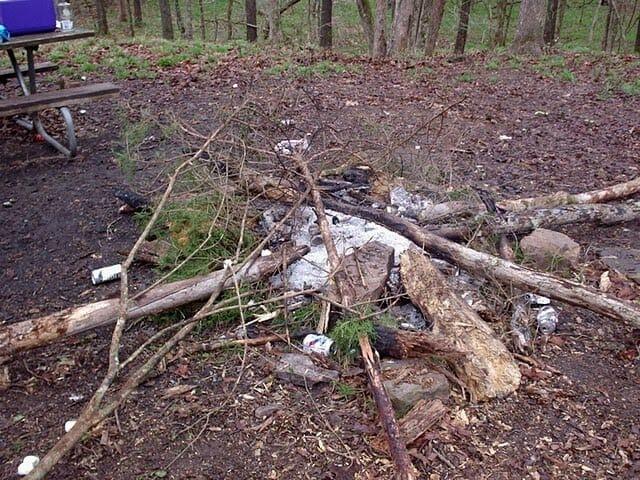 campfiretrash-NP2vfO.jpg