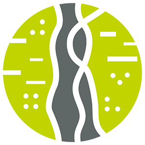 Braided Trails Impact Icon