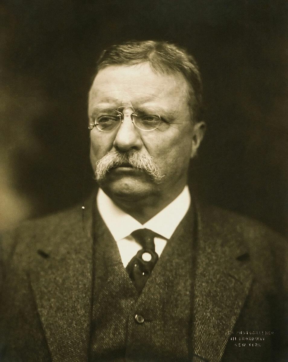 T_Roosevelt-hPBchb.jpg
