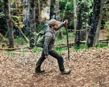 Man hiking with hiking stick in the forest