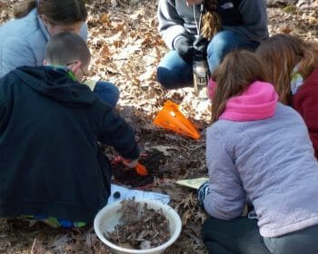 Group of kids digging up leaves